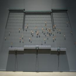 "Pinpoints of Perception: ""Portraits of 1000 Native Bees."" Installation view. Tucson Museum of Art. Oil on copper, etched glass, mixed-media. 2013 and on-going, Dimensions variable"