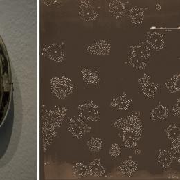 "Transect: ""Field Lens, and Clearing Sequence"" Detail. Etched clock bezels, video still. 2011. Dimensions variable"