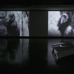 """It's Easy to Live With Promises If You Believe They Are Only Ideas"" Video Installation. 2012"